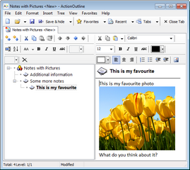 ActionOutline showing a note with a picture
